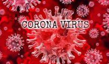 WHO Laporkan Kasus Corona di Seluruh Dunia Meningkat Jadi 7,2 Juta Lebih