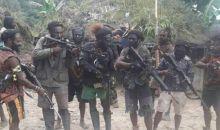 Nyatakan KKB Papua sebagai Teroris, Pemerintah Cari Jalan Pintas atasi Tantangan Konflik Papua